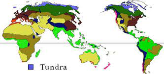 Where is the Tundra Located?
